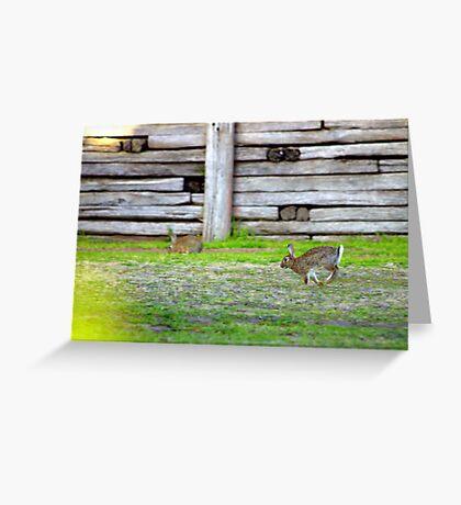 North Head Manly - Run Greeting Card