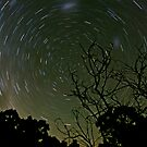 Circling Stars by paulmcardle
