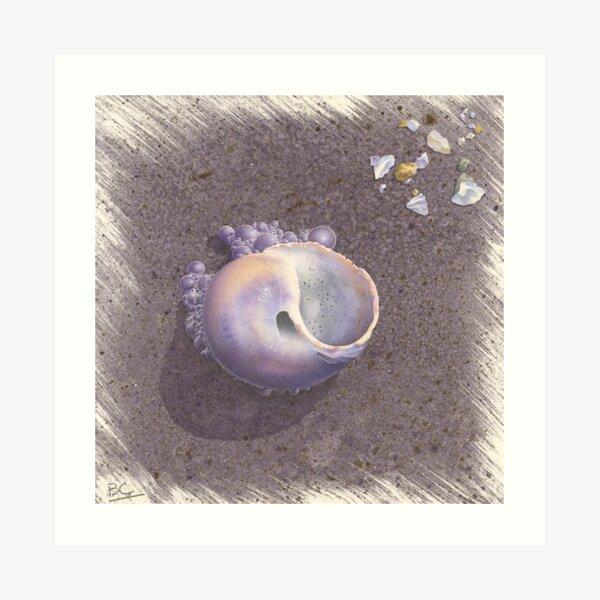 Crane Beach Bubbles Art Print