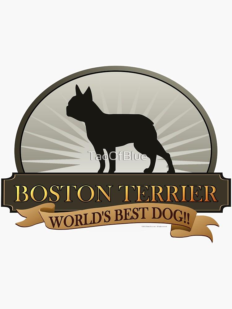 World's Best Dog - Boston Terrier by TaoOfBlue