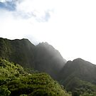 Mist in the Mountains of Maui by aMillionWordsCa