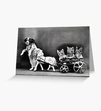Vintage Puppies and Kittens  Greeting Card