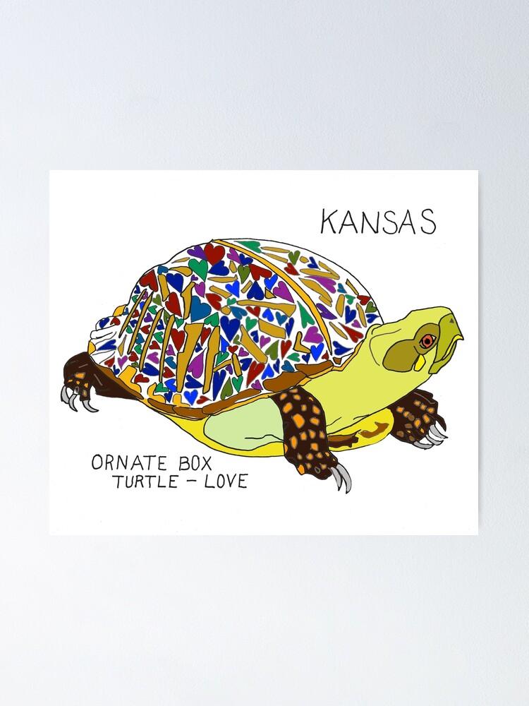 Kansas Ornate Box Turtle Love State Symbols Poster By Cfmacomber Redbubble