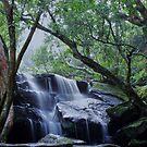Lower Somersby Falls by Len  Gunther