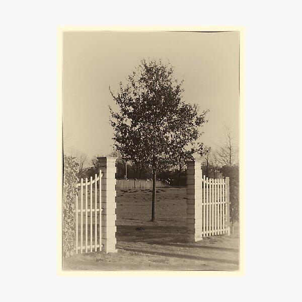 Poort Reijshoeve (Reeshofpark) Photographic Print