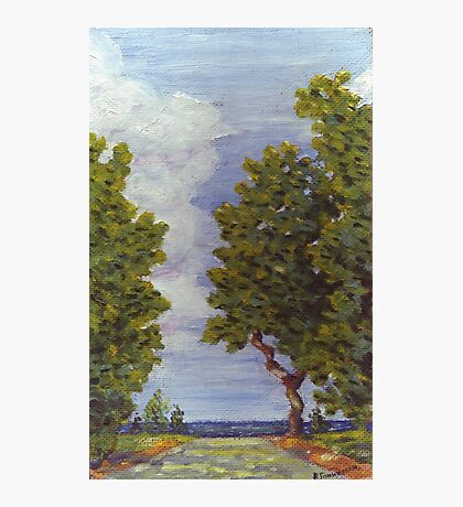Odessa summer, path to the sea oil painting Photographic Print