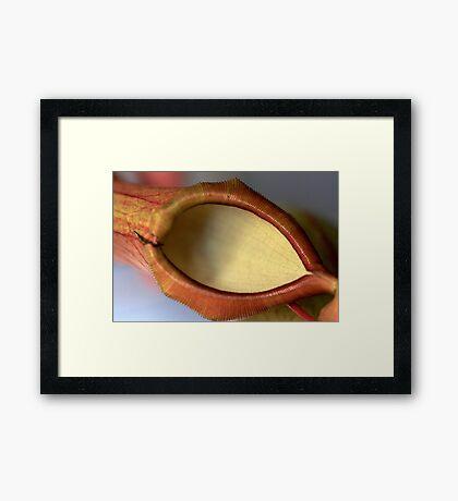 optically clear Framed Print