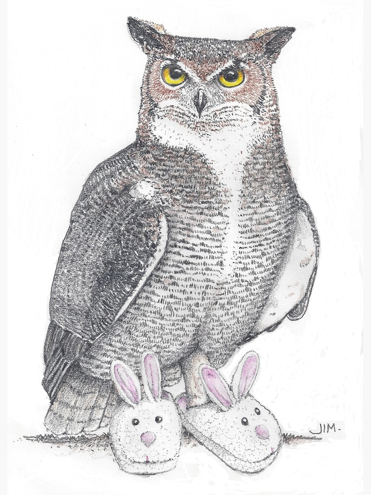 Great horned owl in bunny slippers by JimsBirds