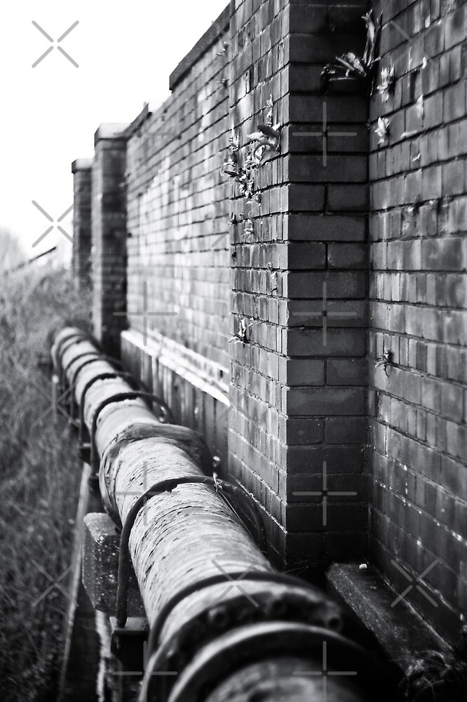 Pipe View by AndrewBerry