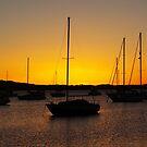 Mornings Glow by Len  Gunther