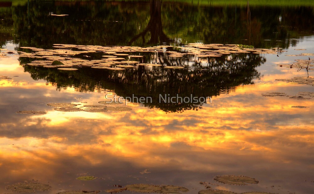 A Different perspective by Stephen  Nicholson