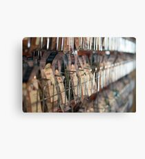Spice rack Canvas Print
