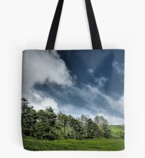 Trees at the Baldwin Reservoir Tote Bag