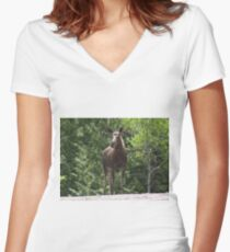 Bull Moose Women's Fitted V-Neck T-Shirt