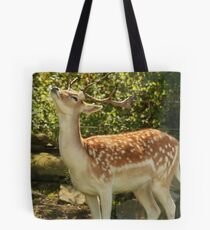 Mmmmm !! Spring is in the Air Tote Bag