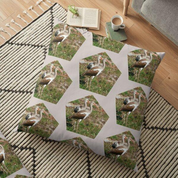 Ibis Couple Floor Pillow