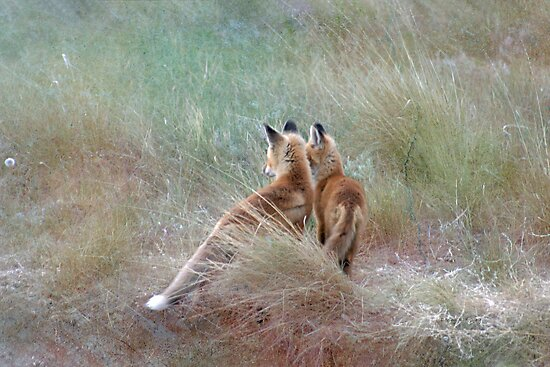 Just the Two of Us by Donna Ridgway
