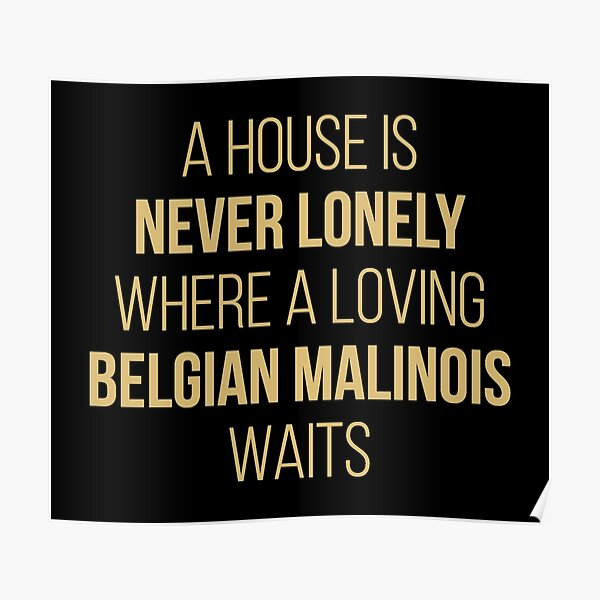 Belgian Malinois Dog Cute Quote Poster