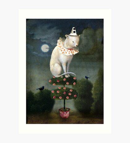 Harlekin Cat Art Print