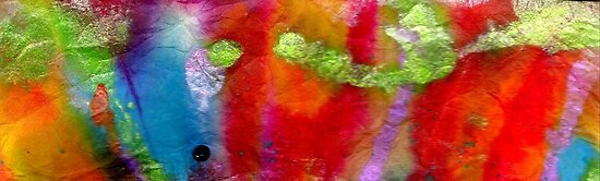 Rainbow Passion by © Angela L Walker