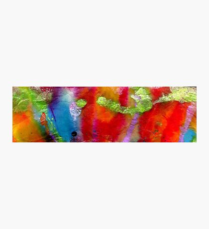 Rainbow Passion Photographic Print