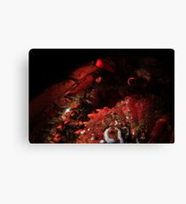 Snooted Hermit Crab Canvas Print