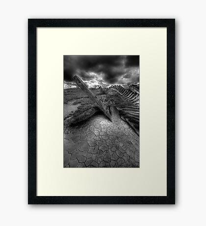 The Skeleton Framed Print