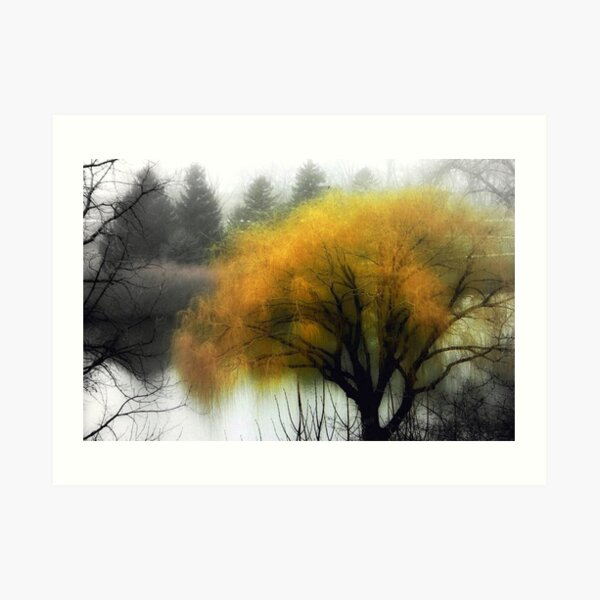 Foggy Morning © Art Print