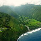 Waipi'o Valley by PJS15204