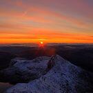 Breaking Dawn by Simon Evans