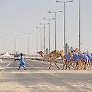 Qatar: Caravan Crossing by Kasia-D