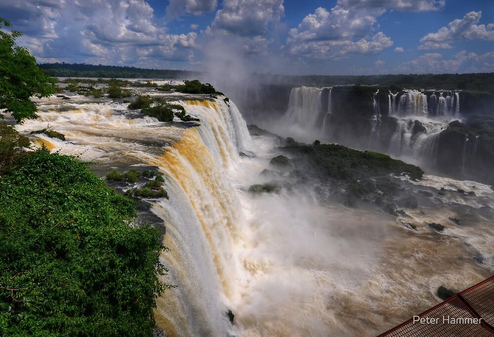 Iguassu Falls by Peter Hammer