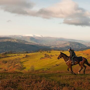 Horseriding in Wales by stevesimages1