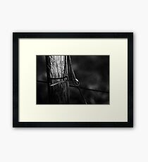 Wire In Shadow Framed Print