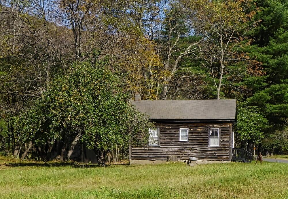 The Bosom Makes a Home by Pamela Phelps