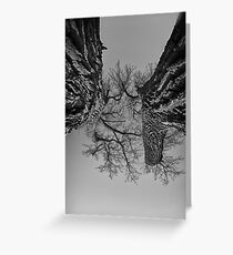 Dueling Brothers Fighting Trees Greeting Card