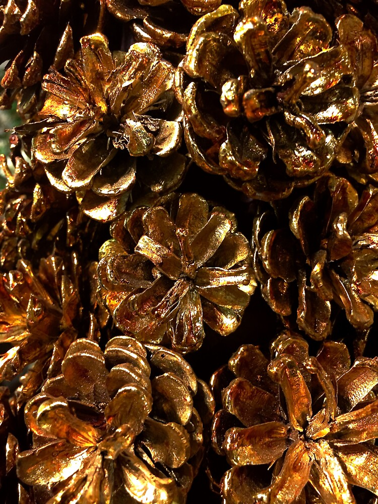 Golden Pine Cones by douglasewelch