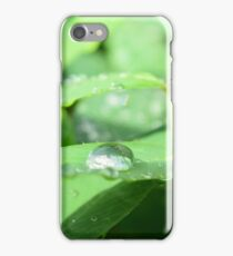 The sourse of life(2015) iPhone Case/Skin