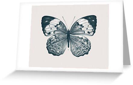 Butterfly - 2 by HermesGC