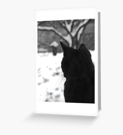 Contemplating Winter Greeting Card