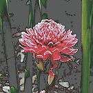The Meditating Flower by Louise Linossi Telfer