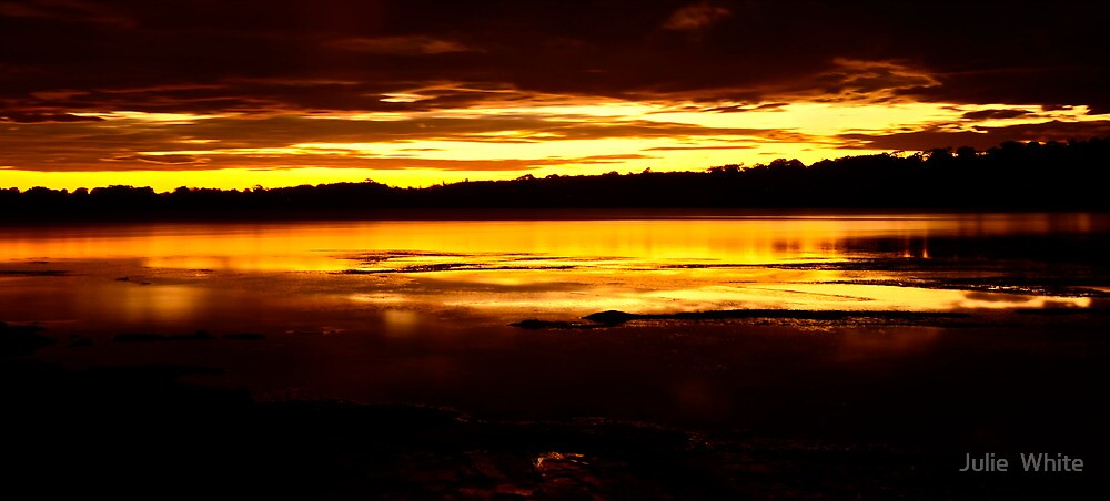 Sunset Silhouette by Julie  White