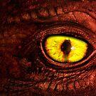 Dragon by Joe Roberts