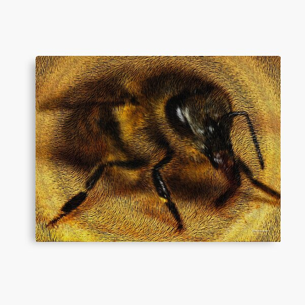 The Killer Bee Canvas Print