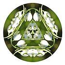 Snowdrop Kaleidoscope by Lynn Bolt