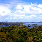 North Head Manly - City of Sydney in the distance by miroslava