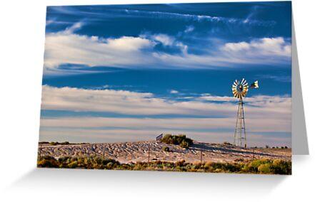 Catch the Wind - Mungo NP, NSW by Malcolm Katon