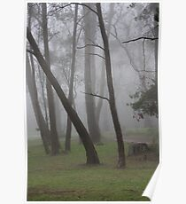 Fairy Bower in Mist Poster