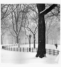 Central Park Walker Poster