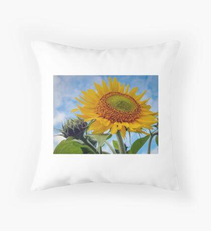 Smile into the Sunshine Throw Pillow